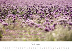 kalender6